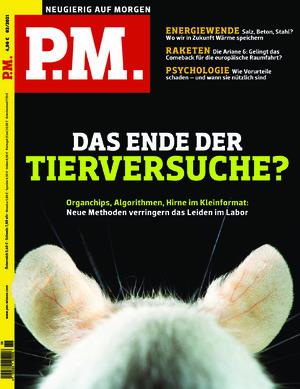 P.M. (02/2021)