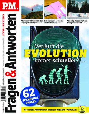 P.M. Fragen & Antworten (02/2021)