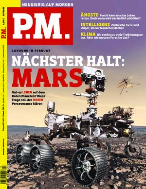 P.M. (03/2021)