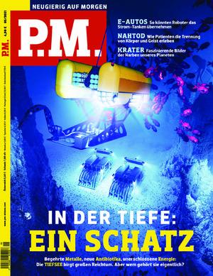 P.M. (05/2021)