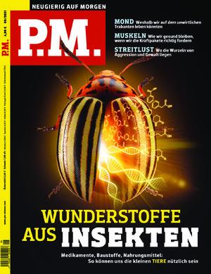 P.M. (08/2021)