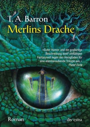 Merlins Drache