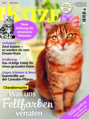 Geliebte Katze (05/2020)