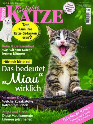Geliebte Katze (06/2020)