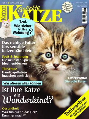 Geliebte Katze (09/2020)