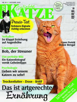 Geliebte Katze (10/2020)