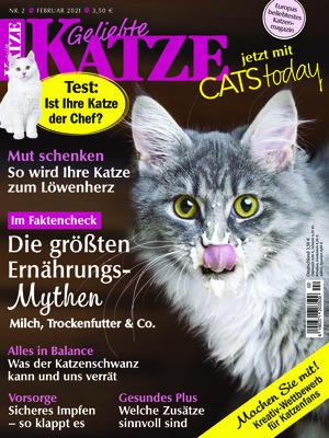 Geliebte Katze (02/2021)