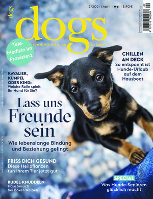 Dogs (02/2021)