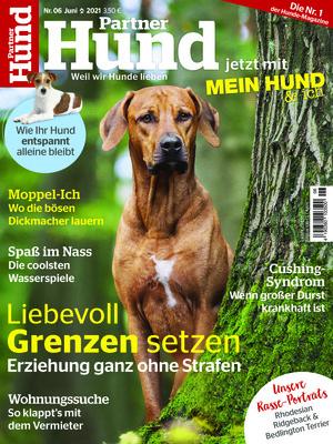 Partner Hund (06/2021)