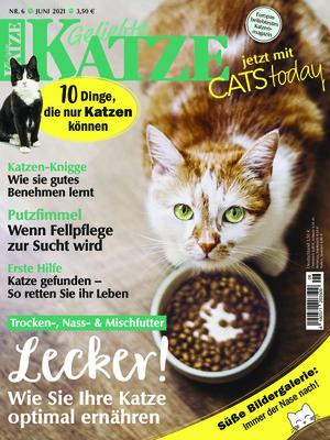 Geliebte Katze (06/2021)