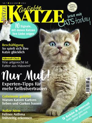 Geliebte Katze (07/2021)