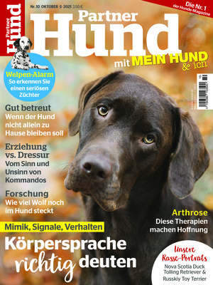 Partner Hund (10/2021)