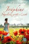 Vergrößerte Darstellung Cover: Joséphine - Napoléons große Liebe. Externe Website (neues Fenster)