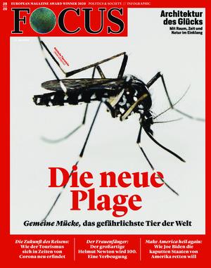 FOCUS (29/2020)