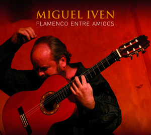 Flamenco entre amigos