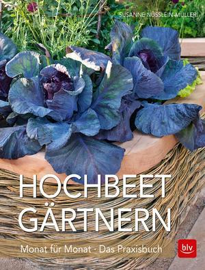 Hochbeet-Gärtnern Monat für Monat - eBook