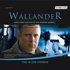 Wallander - Tod in den Sternen