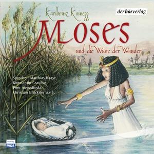 Moses und die Wüste der Wunder