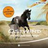 Ostwind - Auf der Suche nach Morgen