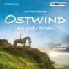 Vergrößerte Darstellung Cover: Ostwind - Der große Orkan. Externe Website (neues Fenster)