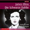 Die schwarze Dahlie