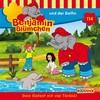 Benjamin Blümchen und der Delfin