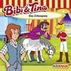 Bibi und Tina - Das Zirkuspony