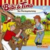 Vergrößerte Darstellung Cover: Bibi und Tina - der Pferdegeburtstag. Externe Website (neues Fenster)