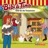 Bibi und Tina - Hilfe für die Tierpension