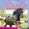 """Wendy - Geheimnis um """"Coltano"""""""