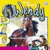 Wendy - Die Seehundstation