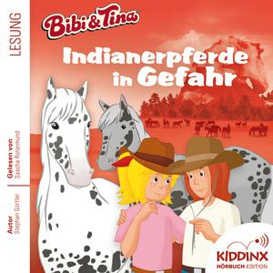 Bibi und Tina - Indianerpferde in Gefahr