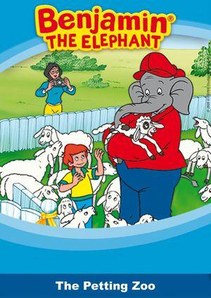 Benjamin the elephant - The petting zoo