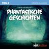 Vergrößerte Darstellung Cover: Phantastische Geschichten. Externe Website (neues Fenster)