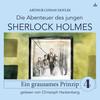Sherlock Holmes: Ein grausames Prinzip