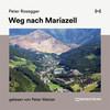 Weg nach Mariazell