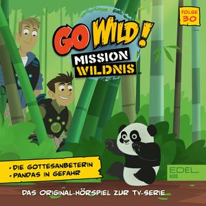 Folge 30: Die Gottesanbeterin / Pandas in Gefahr (Das Original-Hörspiel zur TV-Serie)