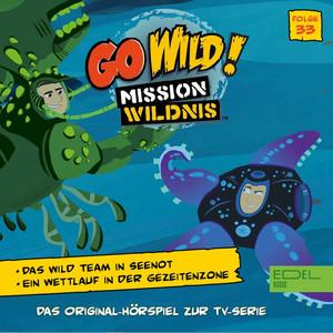 Folge 33: Das Wild Team in Seenot / Ein Wettlauf in der Gezeitenzone (Das Original-Hörspiel zur TV-Serie)