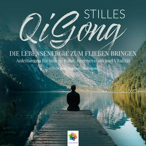 Stilles Qi Gong * Die Lebensenergie zum Fließen bringen. Anleitungen für innere Ruhe, Regeneration und Vitalität