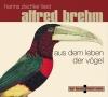 Aus dem Leben der Vögel