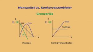 Mikroökonomie D: Preisbildung bei unvollständiger Konkurrenz