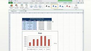 Microsoft Excel 2010 Tutorial