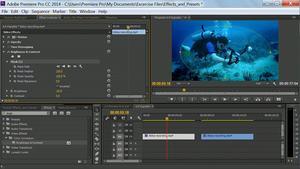 Premiere Pro Guru: Effects and Preset Management