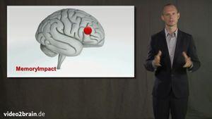 PowerPoint 2010 für Profis
