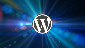 WordPress für Designer: Themes und Layout-Werkzeuge