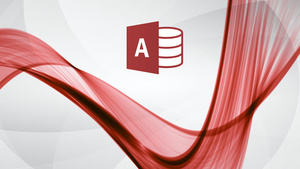 Office 365 : L'essentiel d'Access