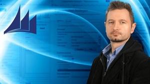 Microsoft Dynamics CRM 2013: Anpassung
