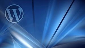 WordPress 4 - Das große Training