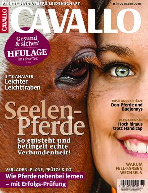 Cavallo (11/2020)