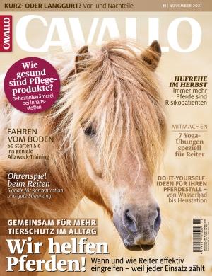Cavallo (11/2021)